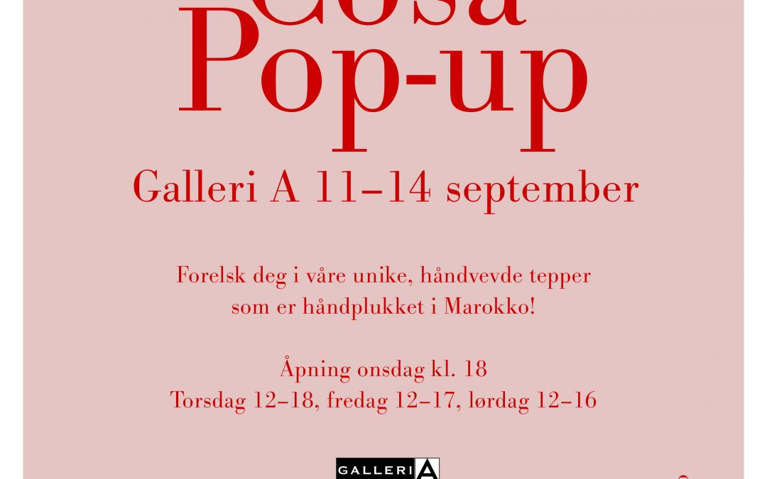 Pop Up shop Oslo