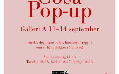 Pop Up shop Oslo